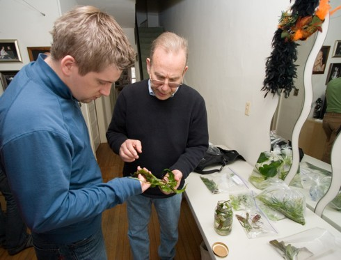 Jay and Hank discuss the Java fern
